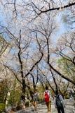 Molla di Seoul Fotografia Stock Libera da Diritti