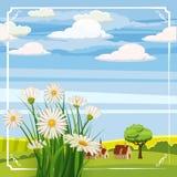 Molla, margherite ed azienda agricola fresche Immagini Stock