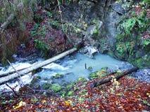 Molla Rossbrunnen di morfologia carsica accanto al lago Klontalersee nella valle di Klontal fotografie stock