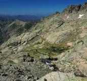 Molla selvaggia della montagna del prato e delle rocce verdi fotografia stock libera da diritti
