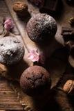 Mollete de la nuez del chocolate Fotografía de archivo