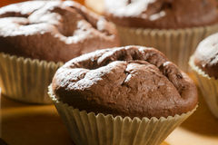 Mollete del chocolate en magdalena Fotografía de archivo libre de regalías