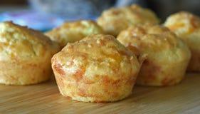 Mollete del queso Foto de archivo libre de regalías