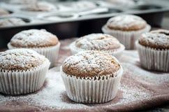 Molletes asperjados con el azúcar en polvo Imagen de archivo
