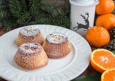 Molletes de la fruta cítrica Composición de la Navidad Foto de archivo