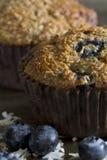 Molletes de salvado del arándano - ascendente cercano Foto de archivo libre de regalías
