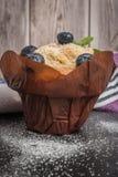Molletes del arándano con el azúcar en polvo y las bayas frescas Foto de archivo libre de regalías