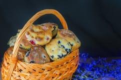 Molletes del arándano con las bayas frescas Fotografía de archivo
