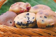 Molletes del arándano con las bayas frescas Imagen de archivo libre de regalías