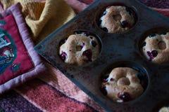 Molletes hechos en casa del arándano Foto de archivo libre de regalías