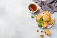 Molletes vegetarianos de la harina de avena con los arándanos y las nueces en una placa Espacio sano de la copia del desayuno del foto de archivo libre de regalías