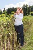 Mollige junge rothaarige Frau steuert die Reifung einer Sonnenblume Lizenzfreie Stockfotografie