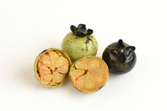 Mollis Griff Diospyros Φρούτα Στοκ εικόνες με δικαίωμα ελεύθερης χρήσης