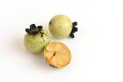 Mollis Griff Diospyros Φρούτα Στοκ Εικόνες