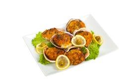 Molluschi farciti immagini stock libere da diritti