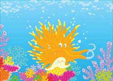 Mollusco fra i coralli royalty illustrazione gratis