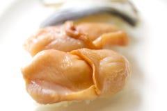 Mollusques et crustacés Photo libre de droits