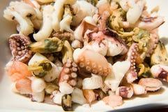 Mollusques et crustacés Images libres de droits