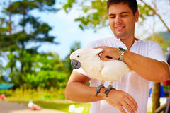 This is Molly. She likes massage. Cockatoo parrot Stock Images