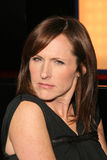Molly Shannon Royalty Free Stock Images