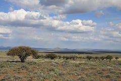 Moln över Hart Mountain National Antelope Refuge Arkivbild