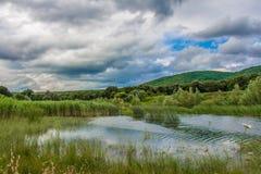 Moln över kullar grönt gräs och vatten Arkivfoton