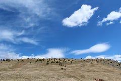 Moln över kullen Arkivfoton