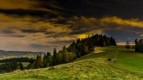 Moln över Pieniny berg stock video