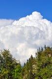 Moln över skogen Arkivbild