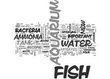 Moln för ord för behållare för akvariumomsorghandbok nytt vektor illustrationer