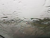 Moln för väggataträd regnar stormen från bilen Arkivbild