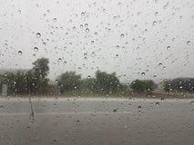 Moln för väggataträd regnar stormen från bilen Royaltyfria Bilder