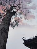Moln i himlen är som brännande flammor arkivbilder