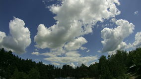 Moln i himmelflyttningen ovanför träden Tid schackningsperiod arkivfilmer