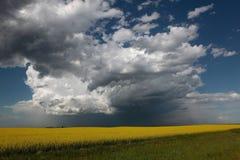 Moln med regn Arkivbild