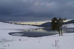 Moln och ett ensamt träd på sjön Royaltyfri Foto