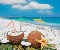 Moln och kokosnötter Arkivfoto