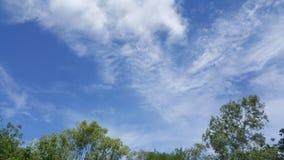 Moln och sky royaltyfri bild