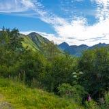 Moln och sol på det Hatcher passerandet, Alaska royaltyfria bilder