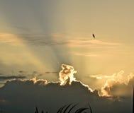 Moln och strålar Fotografering för Bildbyråer