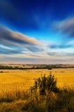 Moln ovanför ett fält Royaltyfria Foton