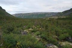 Moln på berget Royaltyfri Fotografi