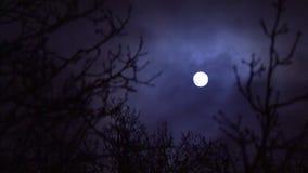 Moln som passerar fullmånen stock video