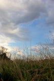 Moln som samlar i himmel över gräs- landskap Arkivbilder