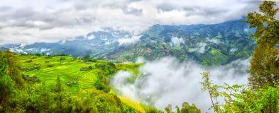 Moln täckte mest härlig terrasser för bergstoppspridning i Ha Giang Royaltyfria Bilder