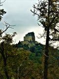 Moln, träd och abbotskloster fotografering för bildbyråer