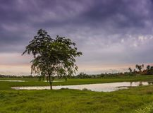 Molnen som är klara för regn Fotografering för Bildbyråer