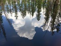 Molnet och skogen reflekterade på vattenyttersidan Arkivfoto