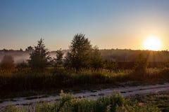 Molnfri himmel, sol- skiva över treetops, dimmig skog och väg Royaltyfria Foton