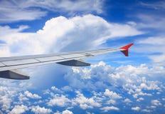 Molngruppjäkel - gå att äta den flyg- vingen Arkivfoto